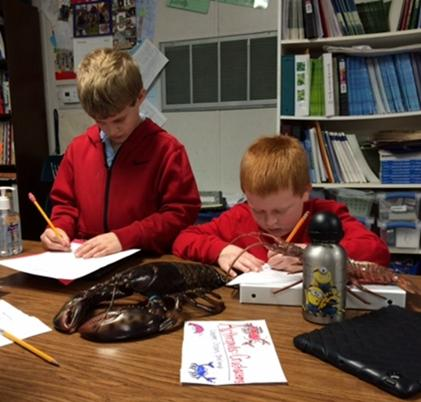 Pinckney Elementary students explored the world of marine invertebrates in their classroom lesson and learned about the importance of seven groups of invertebrates in the food web.